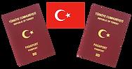 turkeypassport.png