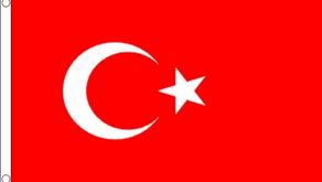 أيهما أفضل الاستثمار في تركيا أم الاستثمار في جورجيا ؟