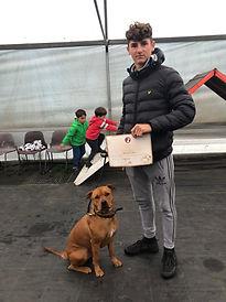 Obeidence Dog Training