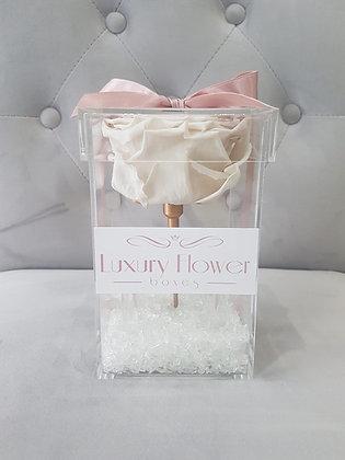 Be Mine Forever - XL Eternity Rose - White