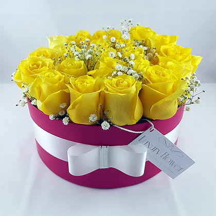 Yellow and Rose