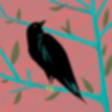 Raven illustration - personal work