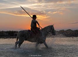 Gardian au coucher de soleil
