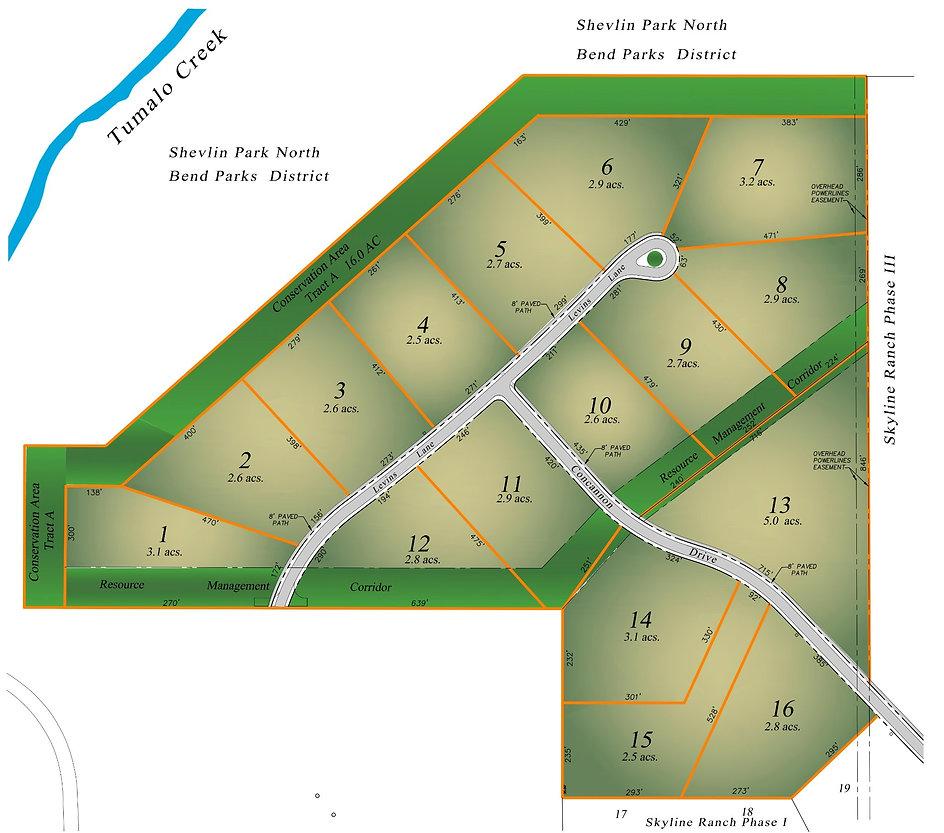 PHASE II Market wo contours 070821_edited_edited.jpg