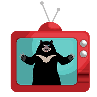 bear tv.png