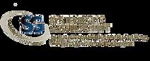logo systemische gesellschaft png.png