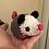 Thumbnail: Otis the Opossum