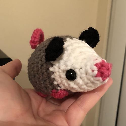 Otis the Opossum