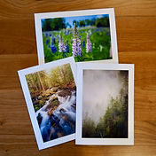 Natures Beauty Cards by Helen Collection