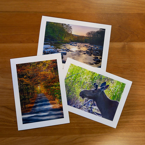 New England Views Card Collection