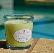 Cucumber Melon Soy Candle Tumbler.jpg