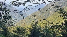 Süd-Schwarzwald Radweg