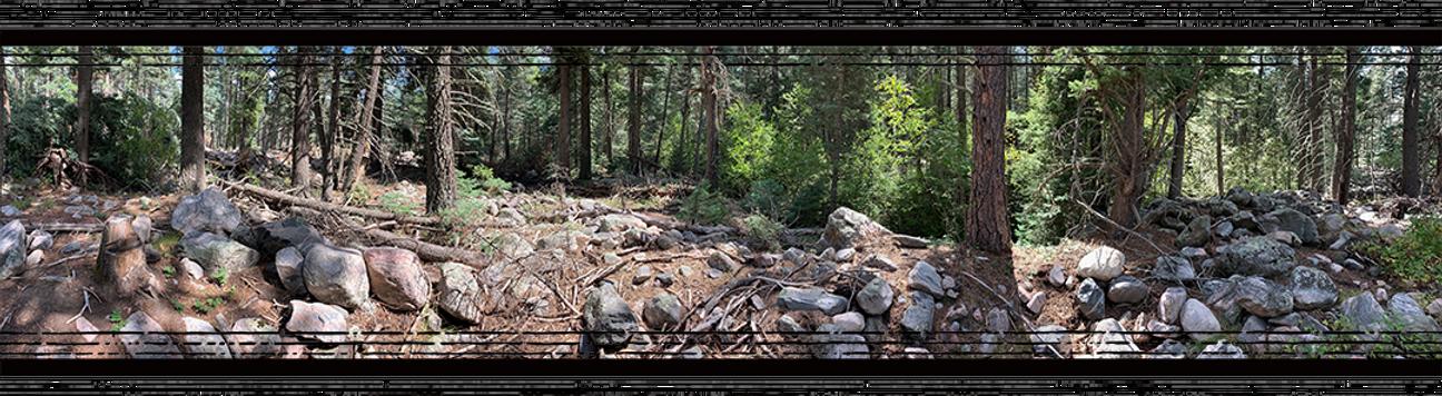 Landscape Web 1.png