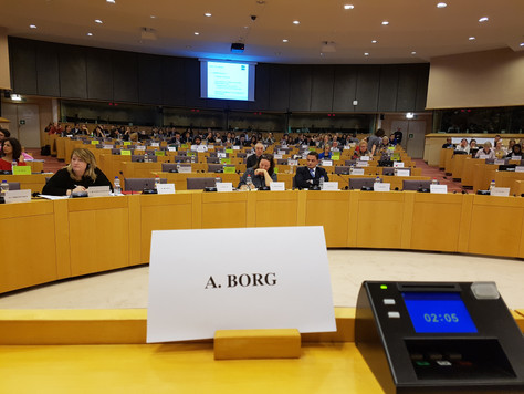 A4E Chairperson addresses the European Parliament's Committee on Employment and Social Affairs