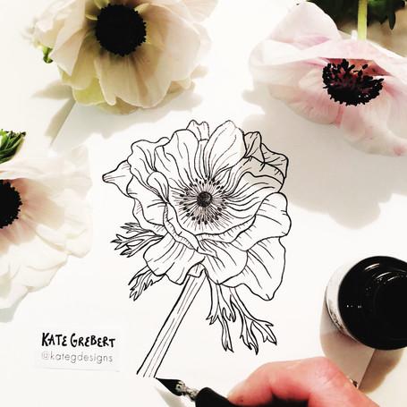 Anemone-Botanical-Ink-Drawing-Sydney-Ill