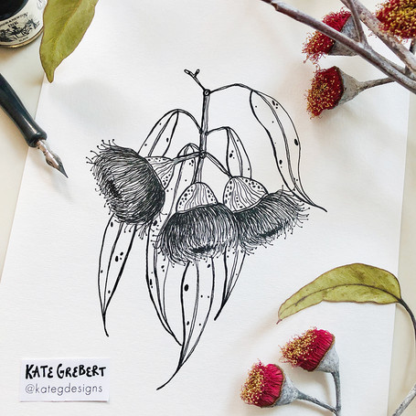 Eucalyptus-Ink-Drawing-Sydney-Illustrato