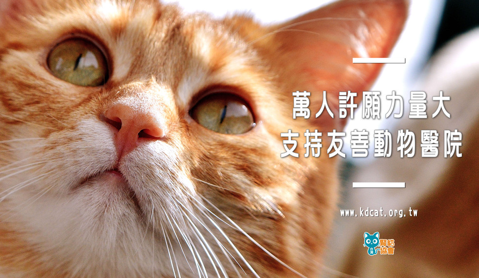 友善動物醫院推廣計畫