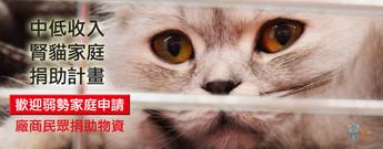 弱勢腎貓家庭捐助計畫