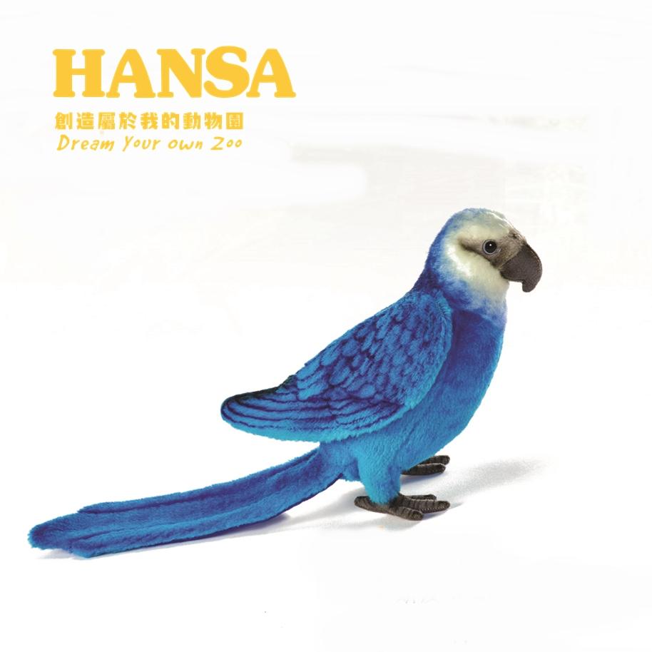 HANSA斯皮克金剛鸚鵡