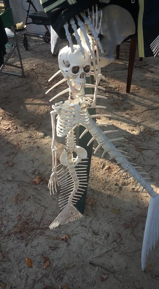 Clayton Dillon Mermaid Skeleton