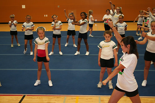 Sideline Clinic(Non-Members, cost per cheerleader)