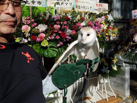 2019.12.15 ペットカフェ  マリン 新規オープン