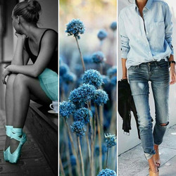 Moodboard in blue 🐳 _#recherchestyle #tissus #psychéconsulting #tenue #mode #conseilimage