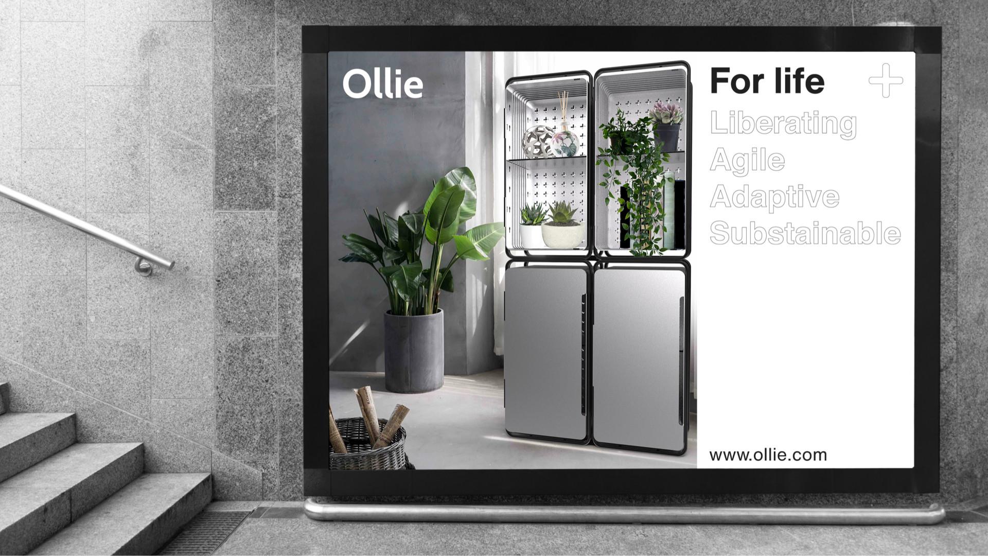 Ollie Final.030.jpeg