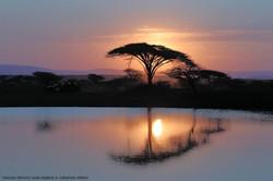 Sunset at Thanda