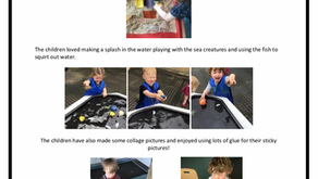 2-3's Room Week Commencing – 17th June 2019