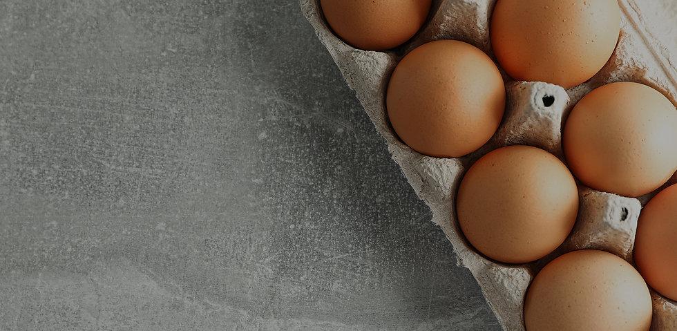 Web_egg.jpg