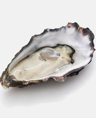oyster-hi-res__72926.1375356631.1280_edi