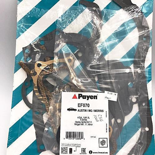 Conversion Gasket Set 948 Payen