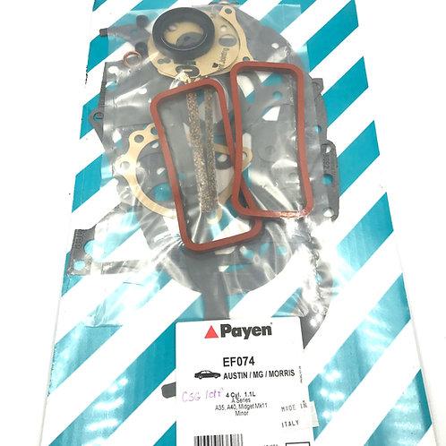 Gasket Conversion Set 1098 Payen