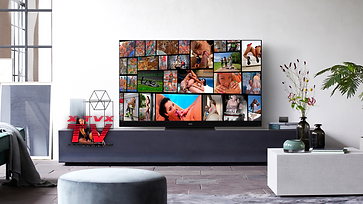 SMART TV LIVING CLEAR   BANNER NEW.png