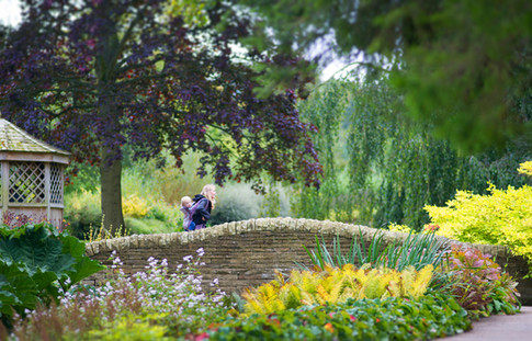 RHS Harlow Carr Gardens Harrogate by Sirastudio. Photographers in Harrogate.