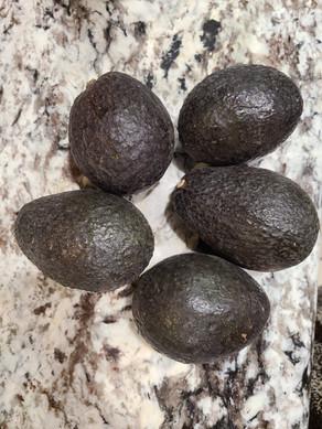 Avocado Saving Tip