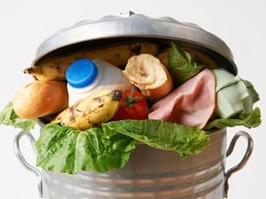 Food Waste, Big Problem