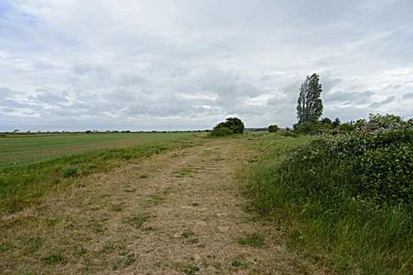 Heacham wells branch