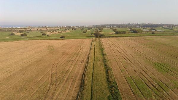 Hunstanton railway Bed Remains