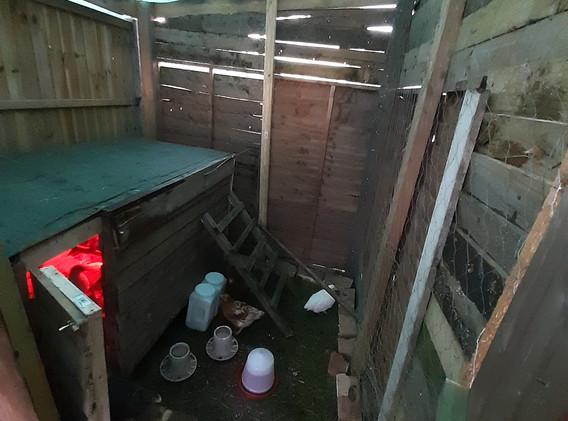 chicken coop diy