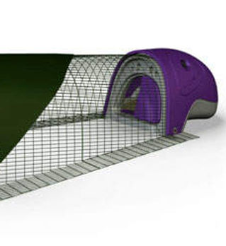 Duck_eglu_purple.jpg