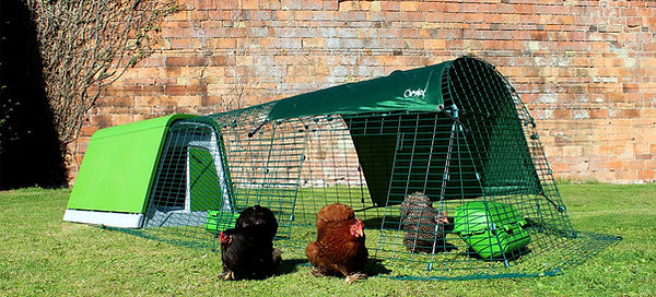 Eglu Go Chicken Coop.jpg