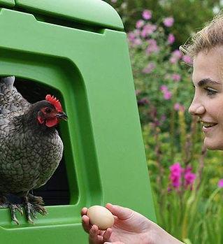 omlet eglu_cube_plastic_chicken_coop.jpg