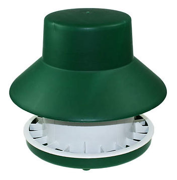 feeder_6kg_blenheim_hat_fd07e75c.jpg