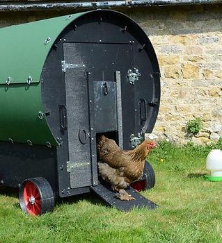 chicken-wagon__06565.1619020539.jpg