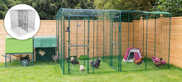 Walk-In-Chicken-Run-With-Partition-DC.jp