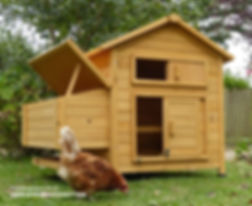 devon-hen-house-open-with-chicken.jpg