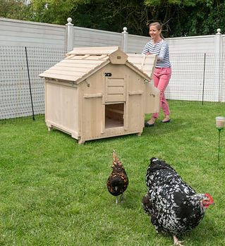 Lenham large wooden chicken coop for sal