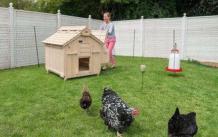 Lenham large wooden chicken coop for sal